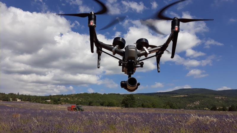 Drone Inspire 2 en vol devant champs de Lavandes à Sault lors de la récolte le 18 Juillet 2020 © Drone-Pictures